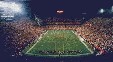 [Image: stadium.jpg]